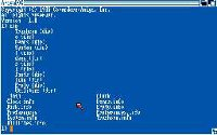Amiga CLI (Command Line Interface)